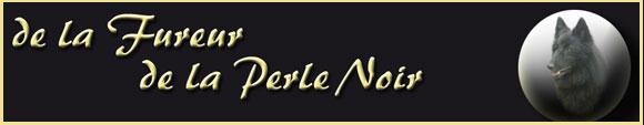 PerleNoir.de